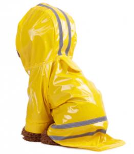 Gele regenjas honden